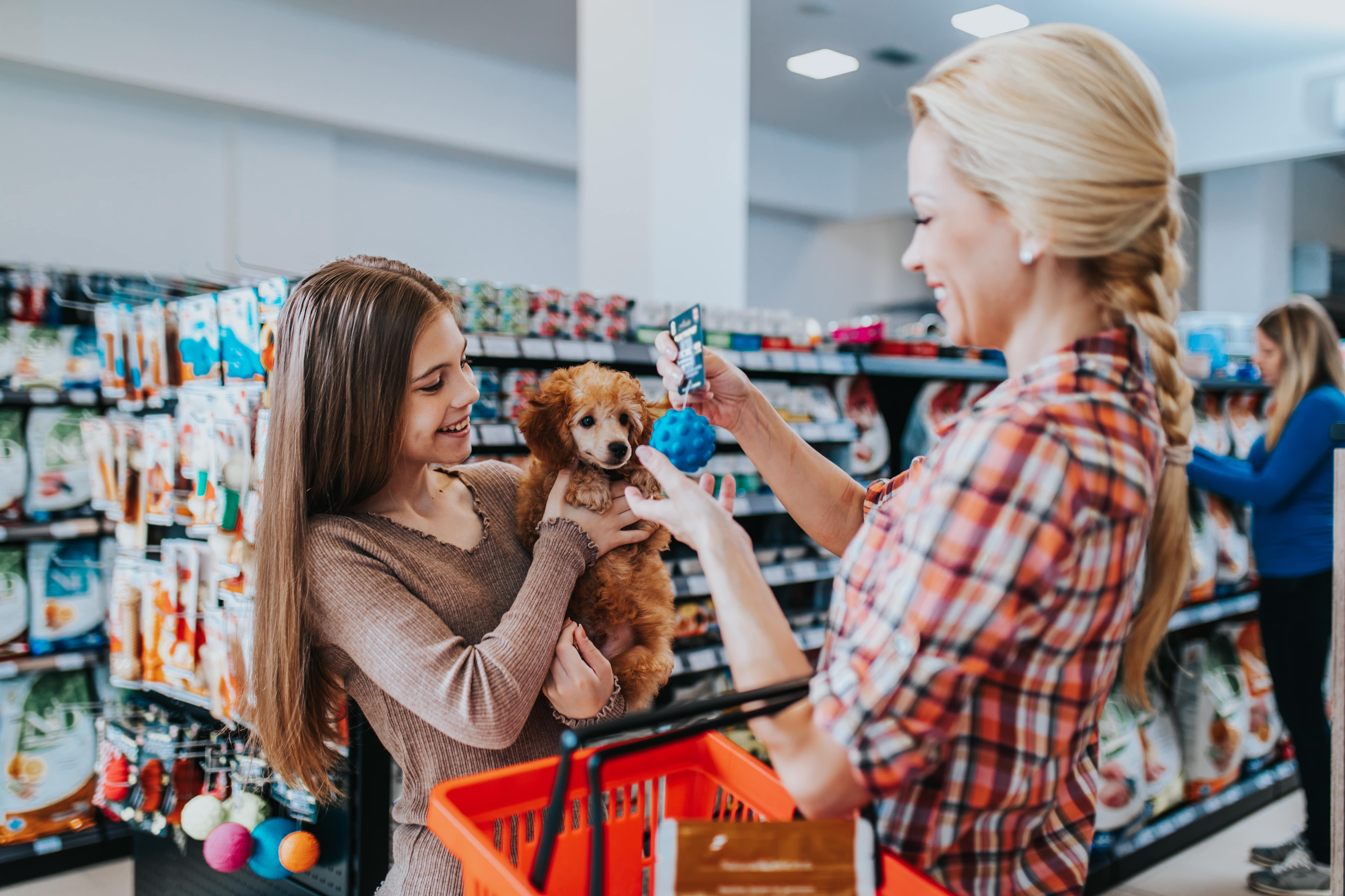 Pet Store Rostering Software